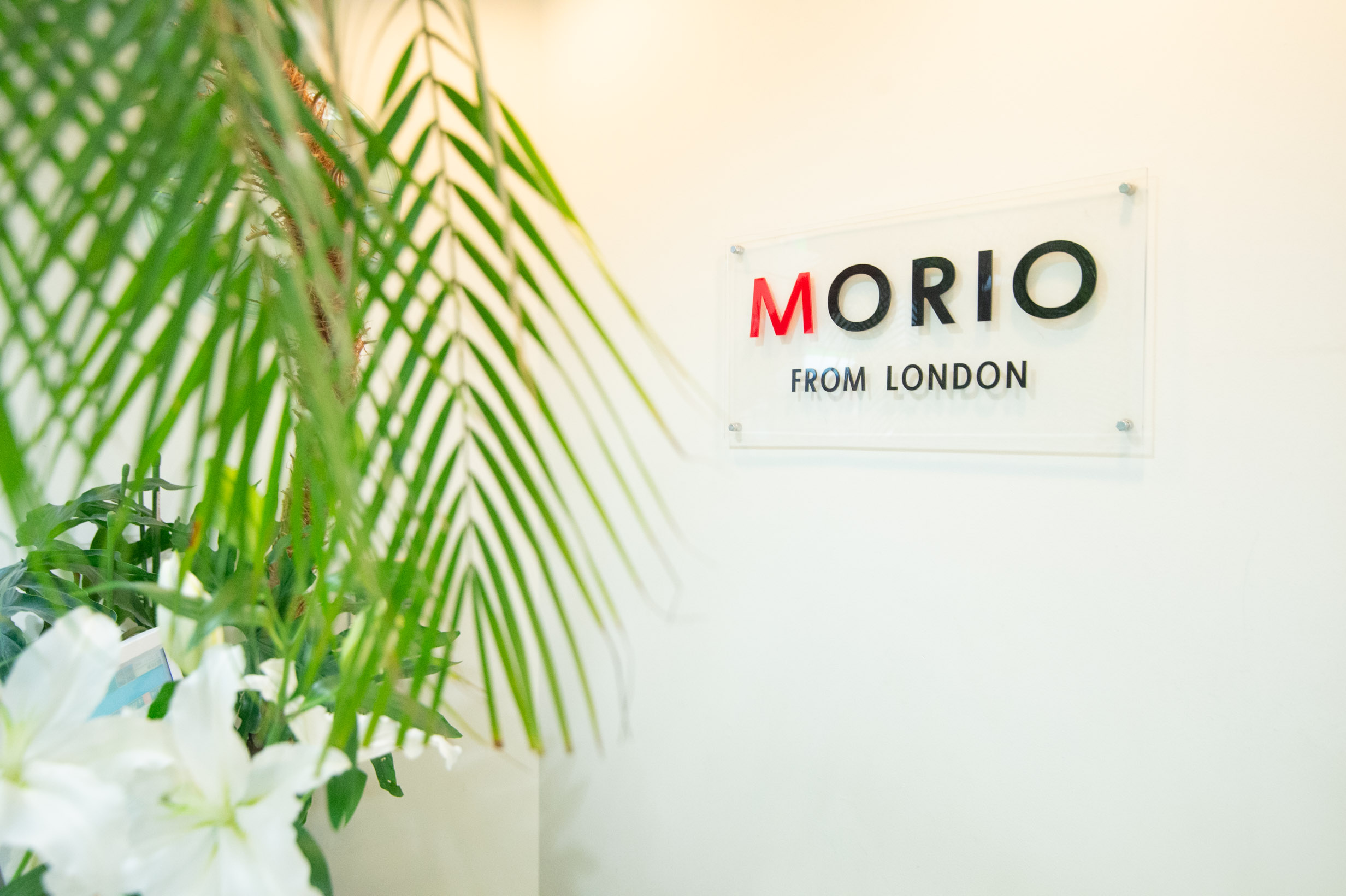 MORIO FROM LONDON 三軒茶屋